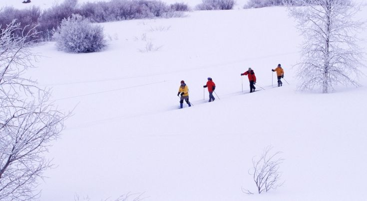 Biegówki to fantastyczny zimowy sport  * * * * * * www.polskieradio.pl YOU TUBE www.youtube.com/user/polskieradiopl FACEBOOK www.facebook.com/polskieradiopl?ref=hl INSTAGRAM www.instagram.com/polskieradio