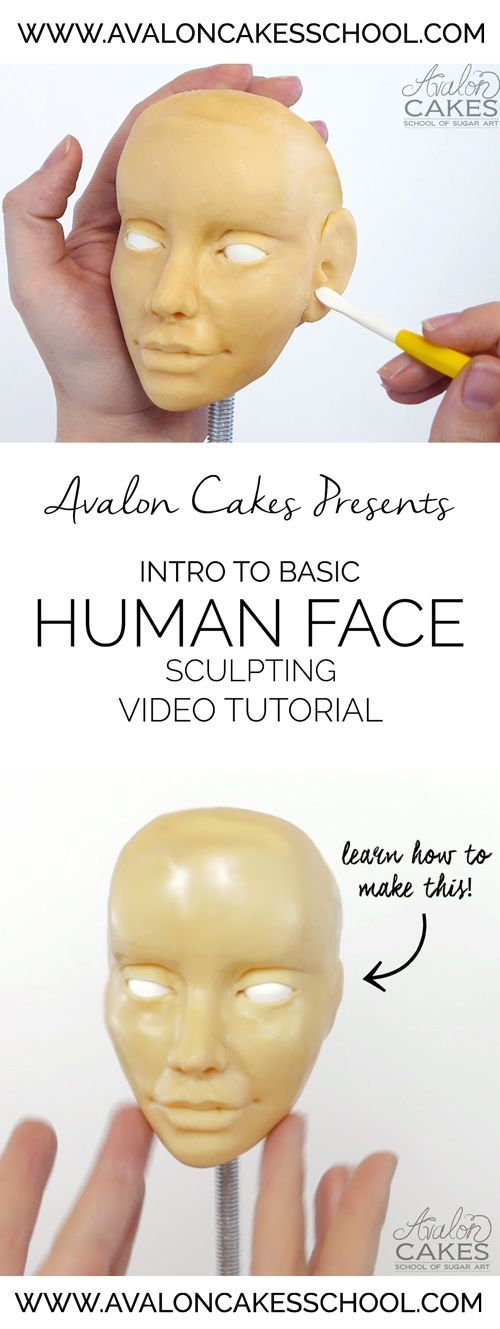 Avalon Cakes Video Tutorial: Intro to Basic Human Face Sculpting. Learn step by step how to make a realistic looking face! Click through for more information.