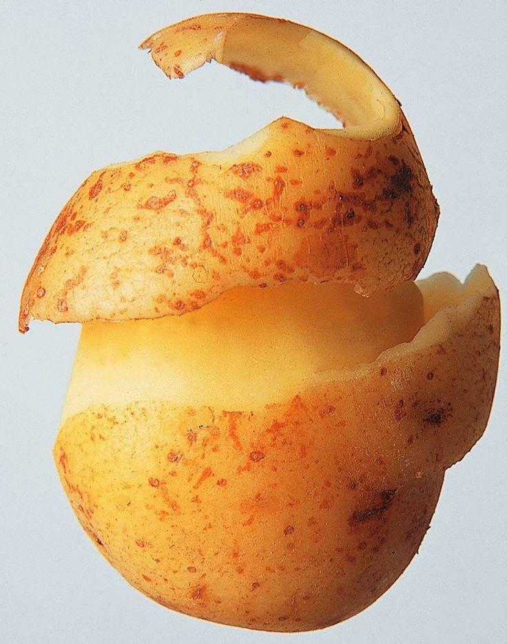 des chips avec les épeluchures!