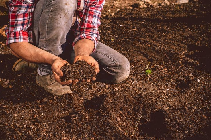 Loose, friable loam is what all gardeners are told they need, but what does that mean. Here's a breakdown of what is in loam soil and how to get it.