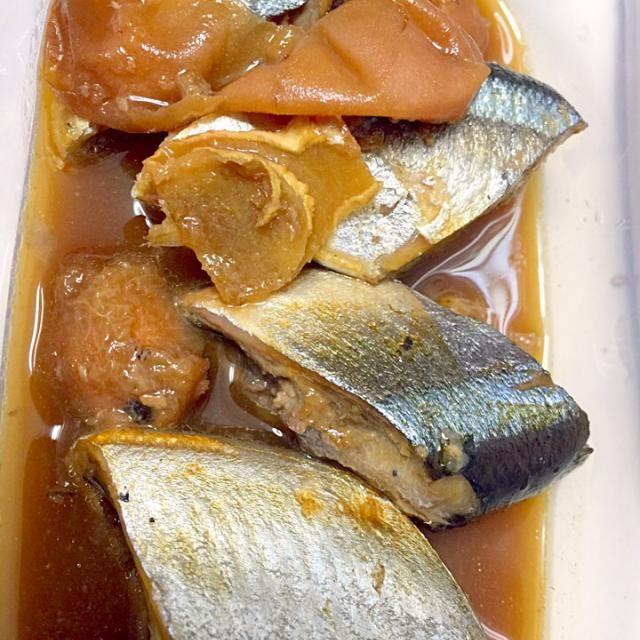 常備食やお弁当に重宝します♬  梅と生姜ですが、粒胡椒とバルサミコ酢が隠し味(^_−)−☆ - 43件のもぐもぐ - 良い時期の解凍北海道青森さんまの梅煮(^^) by hiroohigucG4N