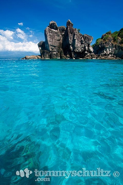 Caribbean blue coral reef at Apo Island near Dumaguete