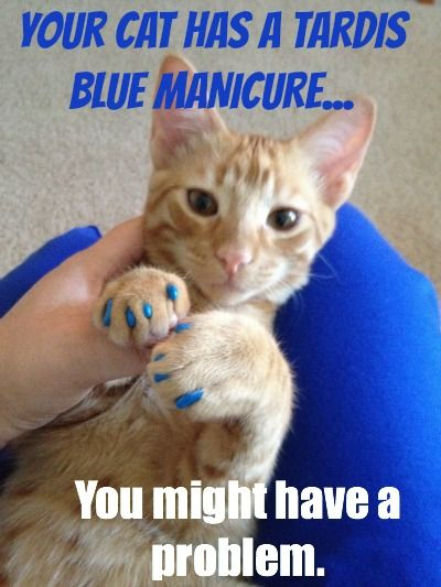 Hunter S. Thomcat (thebloggess.com) with TARDIS nails