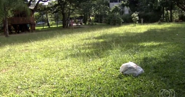 Visitantes reclamam da falta de manutenção no Parque Flamboyant