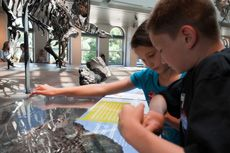 Homeschool Days at The Natural History Museum in LA.  They offer four Homeschool Days a year, so you can enjoy all the great things NHM has to offer without sharing the Museum with traditional school groups!  Plus it is completely free for students and their parents.  #homeschool
