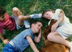 Seksuele ontwikkeling van kinderen (6-12 jaar) | seksualiteit.be