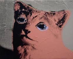 Image result for colorful cats tim walker