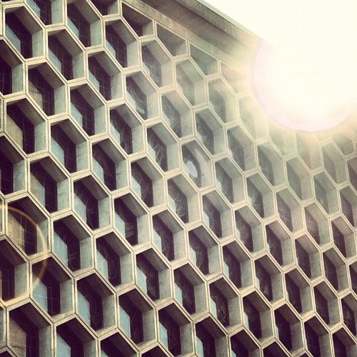Exceptionnel 48 best Honeycomb images on Pinterest | Honeycombs, Architecture  OY09