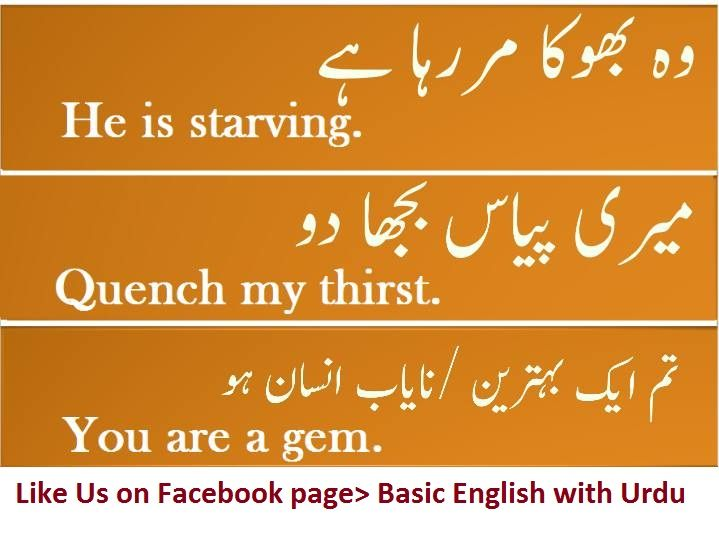 1000 vocabulary words with meaning and sentence English to urdu