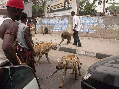 """Hugo's """"The Hyena & Other Men"""" set is a series of portraits of individuals from Nigeria who have hyenas and baboons for actual pets."""