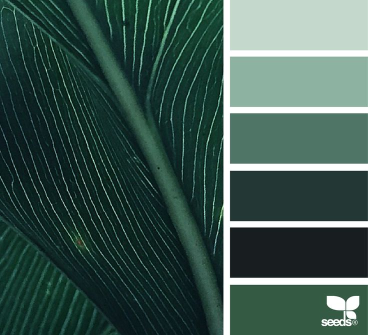 Color Nature - https://www.design-seeds.com/in-nature/nature-made/color-nature-7