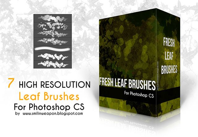 Real Leaf Brushes For Photoshop download