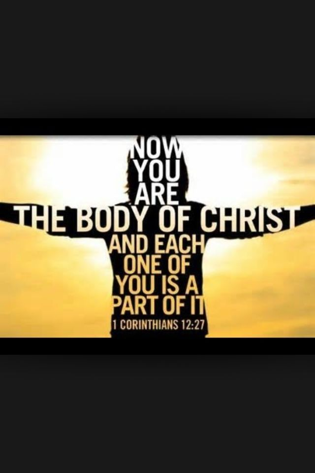 1Corinthians12 :27  We are each part of one body--the body of Christ.