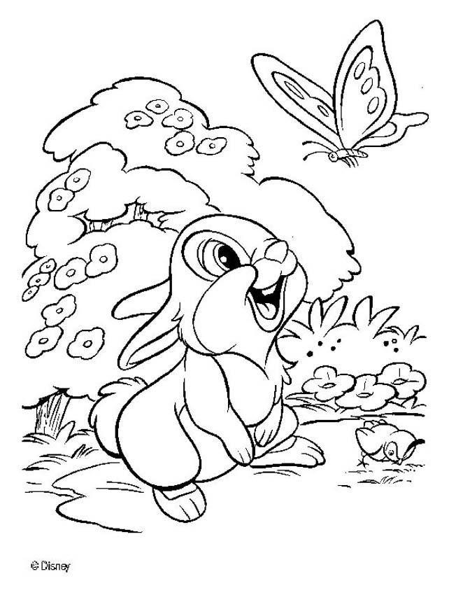 17 Best ideas about Klopfer Bambi on Pinterest | Disney, Disney ...