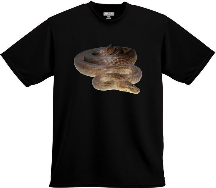 Olive Python Shirt $25AU + p&h.  Available in children's, ladies and men's sizes.  Also available in singlets, long sleeve tees and hoodies. Jump on www.wildlifedemonstrations.com to order and see our full range.