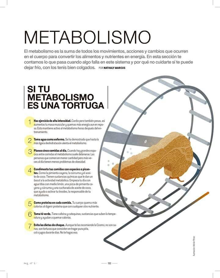 Los mejores consejos para acelerar metabolismo pastillas