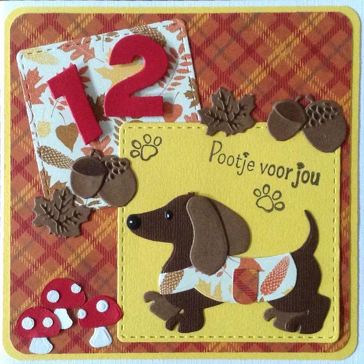 """Pootje voor jou"" verjaardagskaart voor 12-jarige dierenliefhebster"