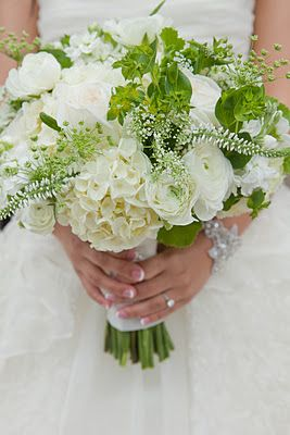 hydrangea, lismachia, geranium foliage, garden roses, ranunculus, stock, queen anne's lace, and bupleurum. white and green bouquet.