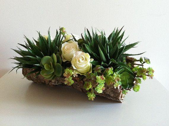 compositions moderne avec des plantes grasses, et une bûche de bois