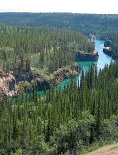 The Yukon River Trail Marathon follows along Miles Canyon and the Yukon River for 6 km.