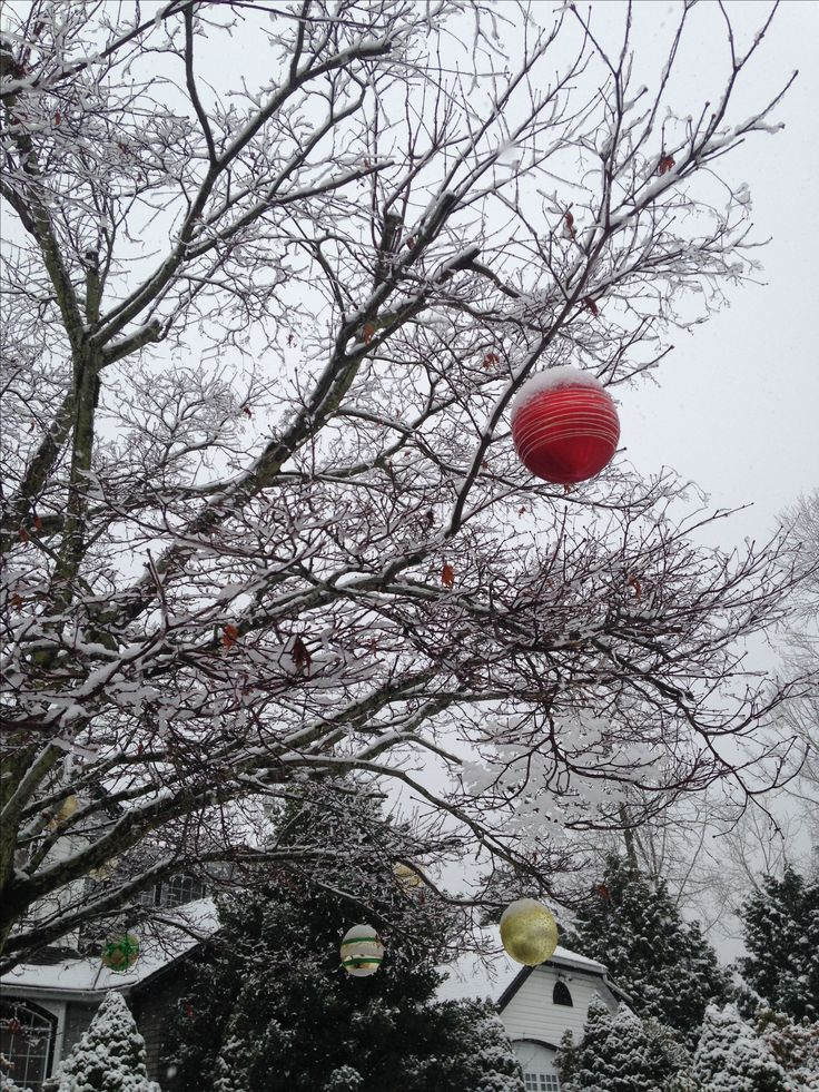 Christmas balls in the tree outside
