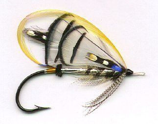 """Lady Amherst"" salmon fly for fly fishing"
