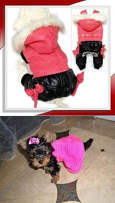 Выкройки одежды для собак