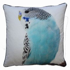 Large Budgie Cushion