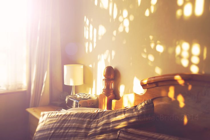 morning light... | by CatMacBride