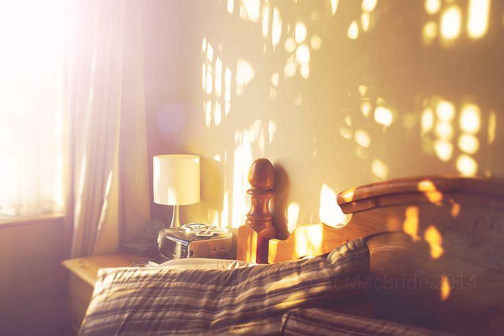 morning light... | by CatMacBride