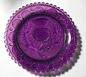 Sandwich glass.: Pretty Purple, Colors Purple, Purple 2, Embossing Purple, Purple Flowers, Purple Glass, Flowers Plates, Flowers Cups, Embossing Flowers