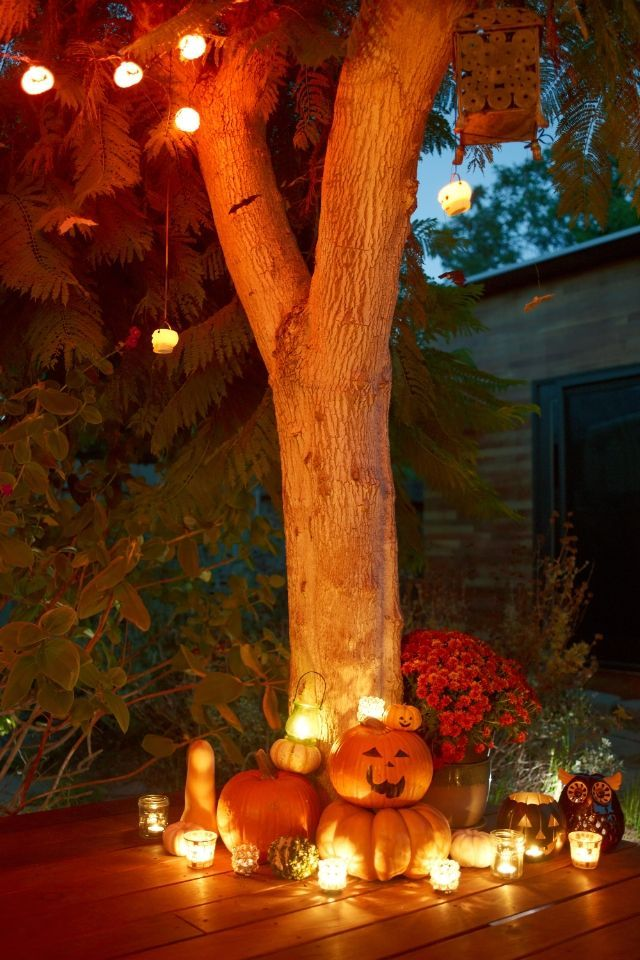 25 Best Halloween Decorating Ideas On Pinterest Fun Halloween Decorations Diy Halloween And