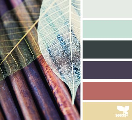 226 best color combinations images on pinterest color palettes dried tones bedroom or living room color palette fandeluxe Image collections