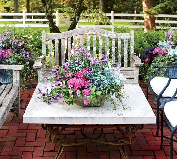 die besten 25 petunien ideen auf pinterest mischkultur hinterhof pflanzen und garten. Black Bedroom Furniture Sets. Home Design Ideas