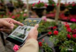 Jardinage: internet peut vous aider!
