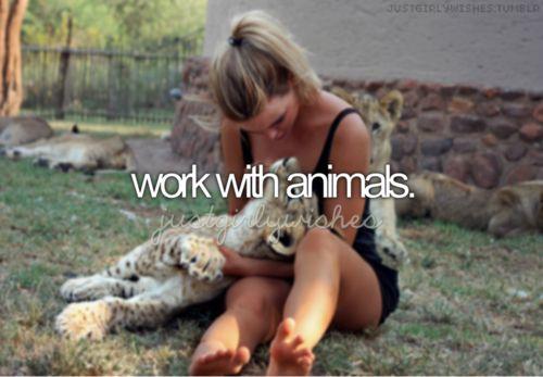 Career 1---I want to be a marine mammal veterinarian!!