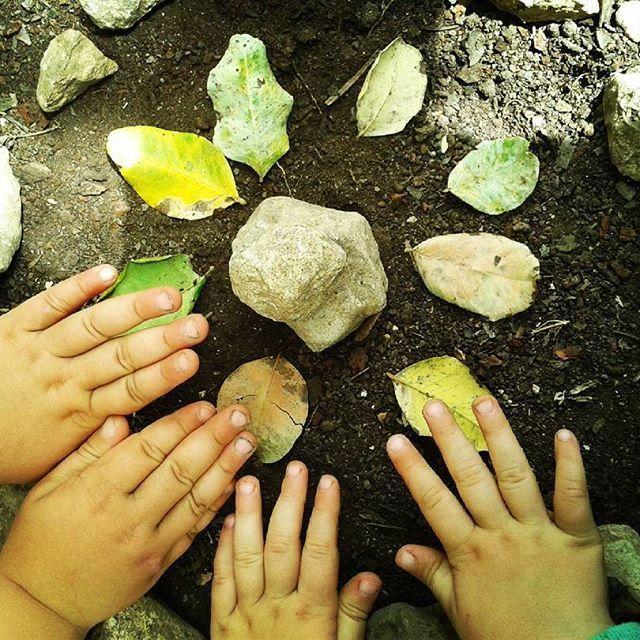 Oggi gioco all'aria aperta. Con poco si puo fare tanto. #manine #mani #piccoli #belle #ora #now #bellezza #natura #verde #mandala #kids #bimbi #giocare #yogakids #yogaperbambini #yogaperbambininoto #namaste