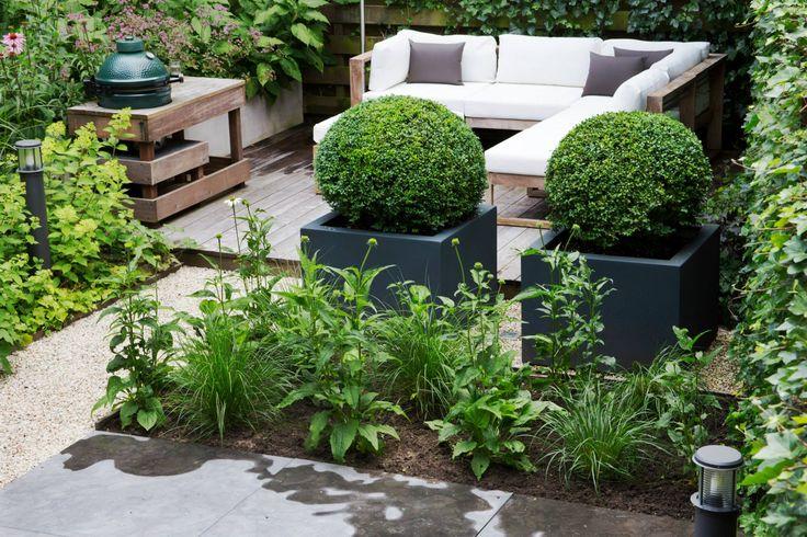 Polyesther plantenbakken met buxusbollen
