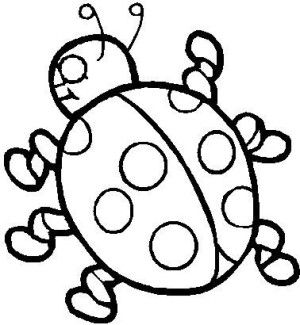 Insects coloring page 24