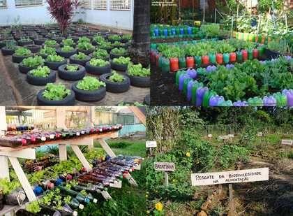 Aula Prática Estendida: Hortas Escolares