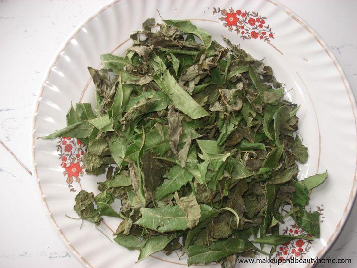 Magic herbs that cure acne.