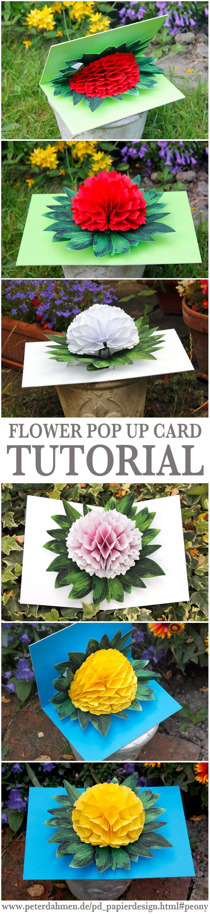 Flower Pop Up Card Tutorial by Peter Dahmen (just click on the flower to go to the tutorial)  Genial !