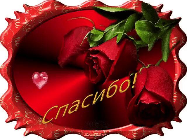 Днем рождения, открытки спасибо роза