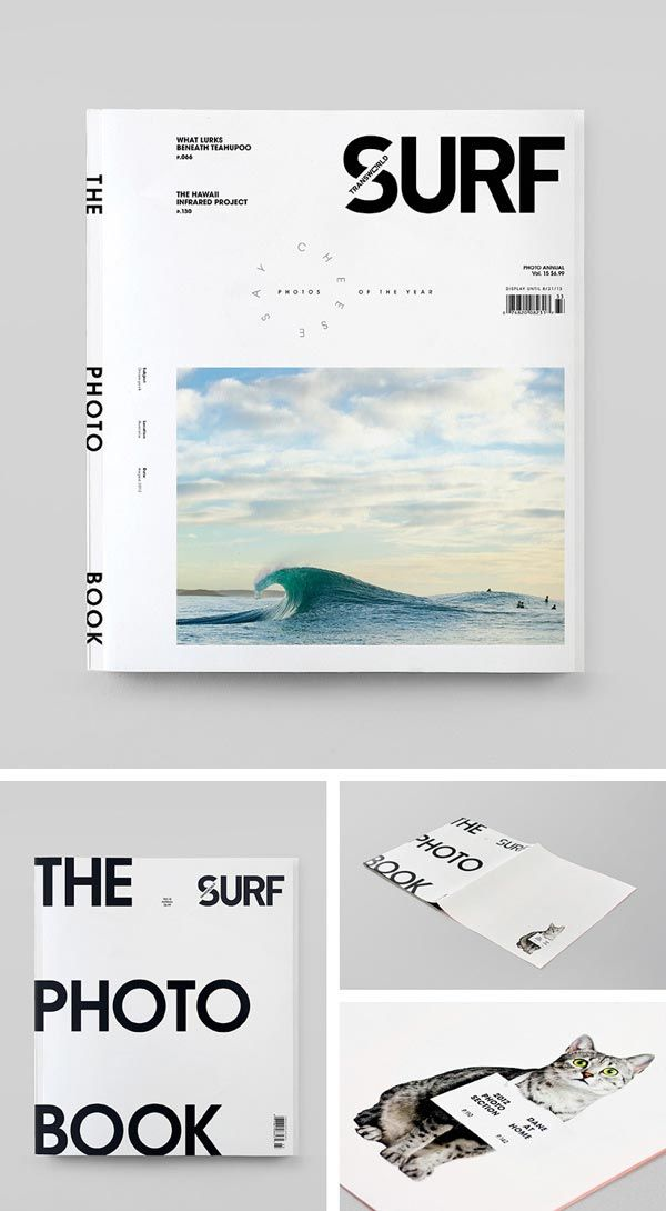 Transworld Surf Photo Book Wedge  Lever y su trabajo para Transworld Surf
