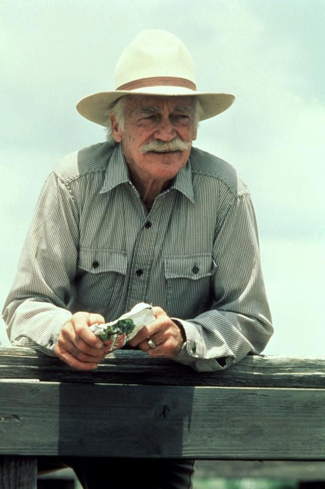 17 best images about richard farnsworth movies and for The farnsworth