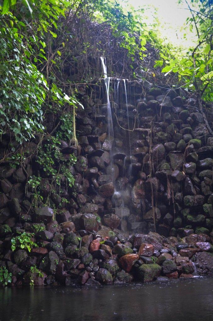 Cascada encantada at jard n bot nico la laguna san for Jardin botanico el ejido