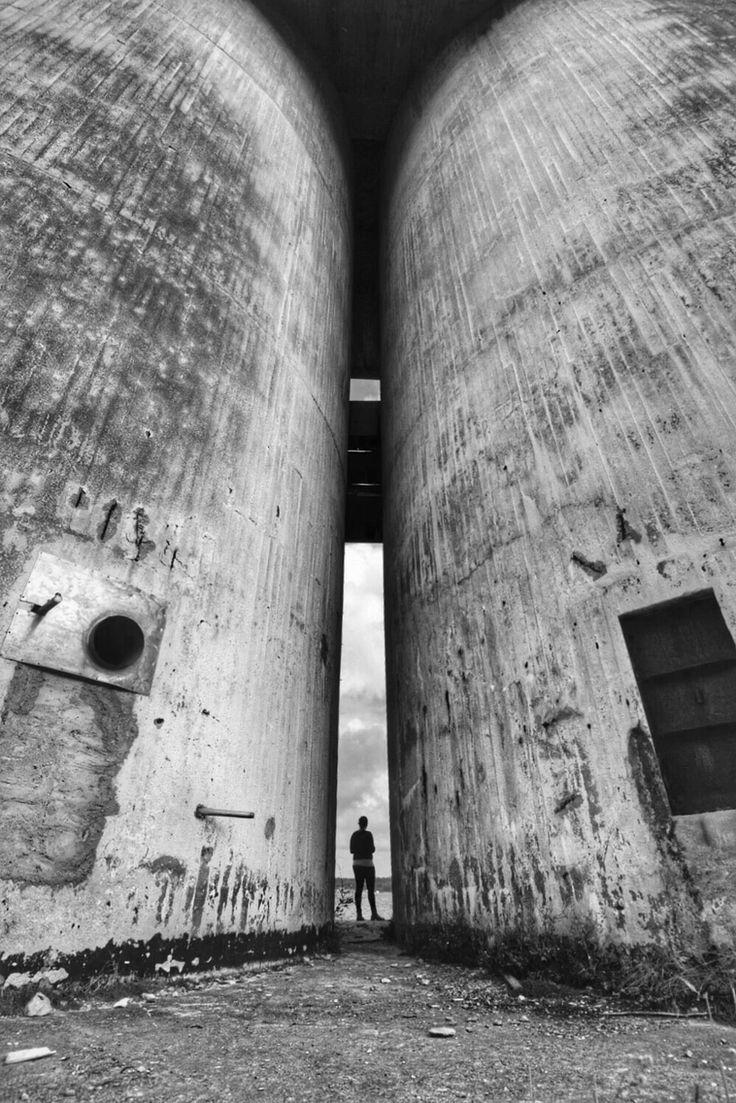 Oaxen - Photo: T.Paulzon