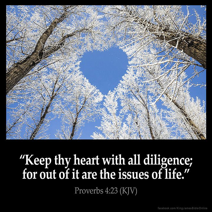 Proverbs 4:23  Keep thy heart with all diligence; for out of it are the issues…