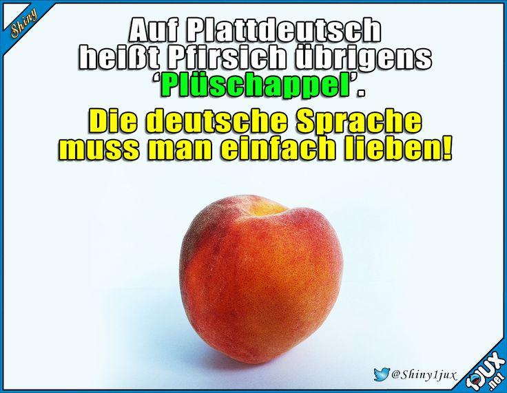 Ich nenn die ab jetzt nur noch so! #deutsch #Deutschland #Plattdeutsch #lustig #Sprüche #Fakt