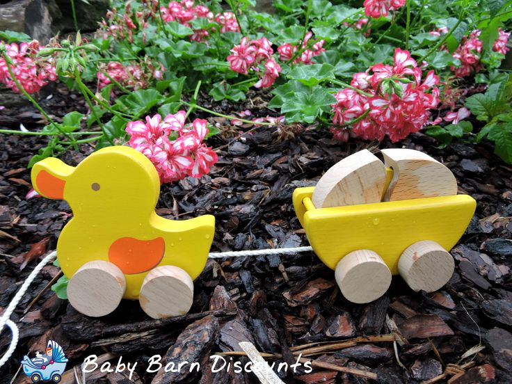 Quack Quack! Introduce your little one to this cute little pull along duck! Your child will love this cute pull along duck and egg toy by Ever earth. The egg can be played with separately and will help develop fine motor skills with its puzzle like design.
